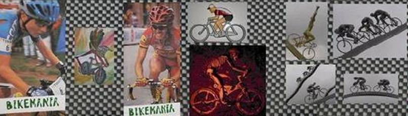 Bicibikemania - ruedas llantas cierres  -  bicicletas Bikemania La Felguera Asturias